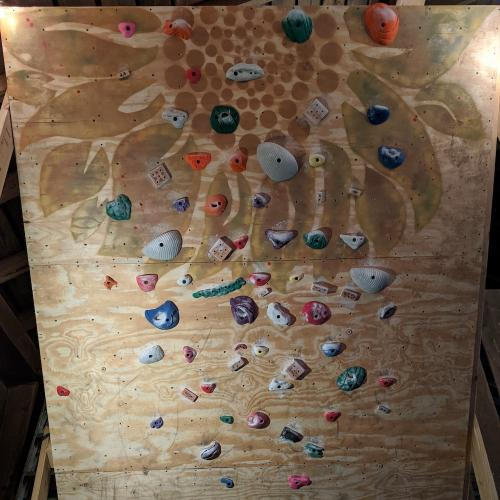 Maggie Bupp Home Wall - ASCEND Home Wall Contest